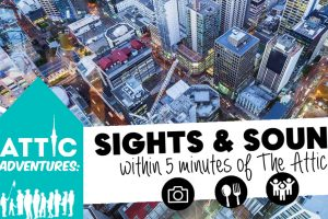 Adventures in Auckland in 5 min walk from The Attic Backpackers